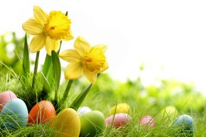 spring-time-easter-1691353-5760x3840